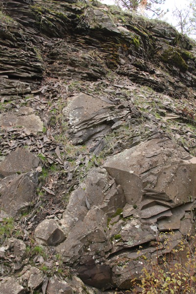 lobes of Wanapum Basalt resemble onions along the trail