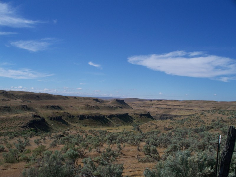 Looking south at the HU Ranch Cataract Gorge (Davins Coulee) from the road.