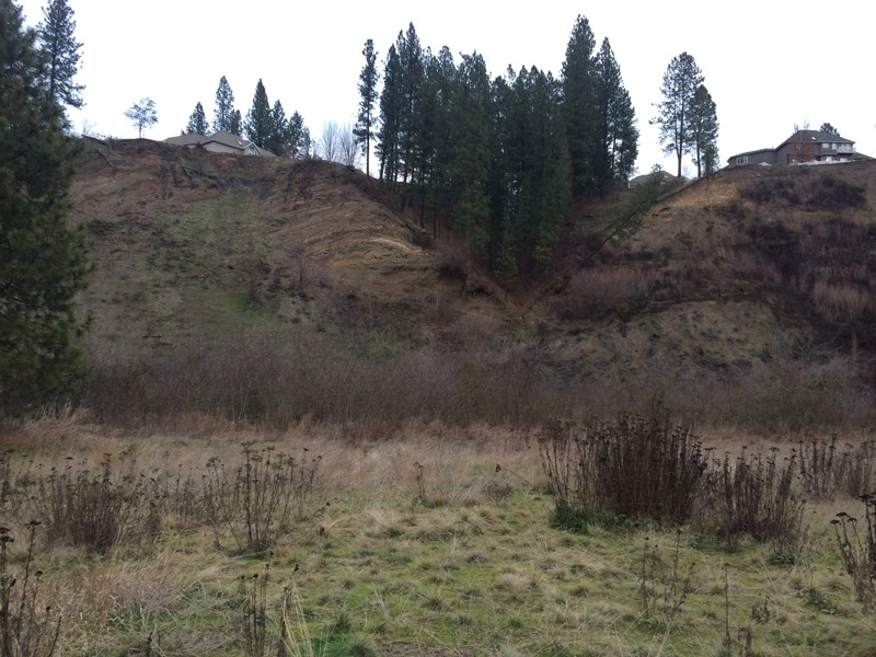 Photo of the thrust fault and folding east of Latah Creek.